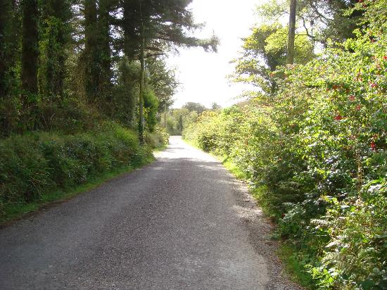 A road that leads to Drombeg Stone Circle