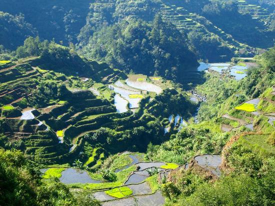Banaue Rice Terraces: A wonder of God and man in partnership