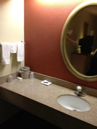Red Roof Inn Tampa Brandon: Vanity Area