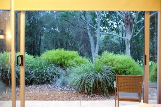 Gilgara Retreat: The living opens out to a patio with lovely garden & bushes