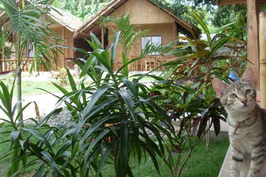 Reggae Guesthouse: Un endroit ou l'on se sent bien