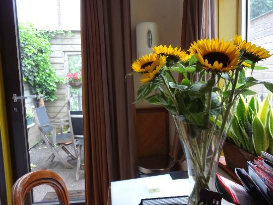 Suite 259: あらかじめ伝えておいた、好きな花ひまわりがいっぱい!