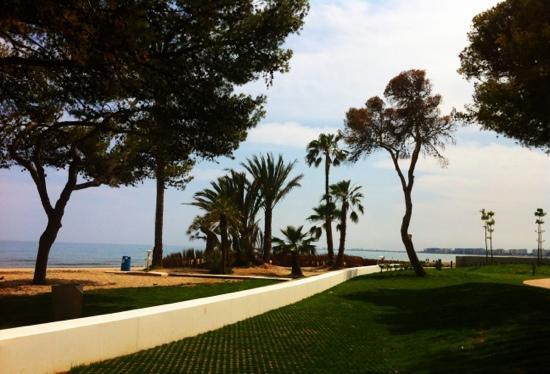Hotel Tramontana: strandkant van het hotel