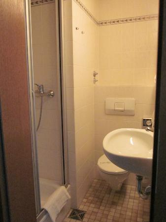 Hotel Europaischer Hof: Room 120 - very small bathroom!