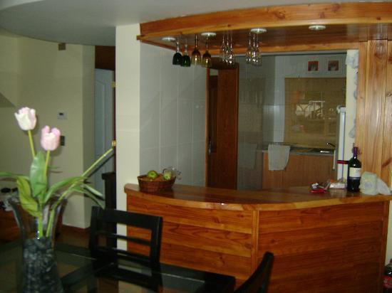 Sol y Lago Apart Hotel: Bar