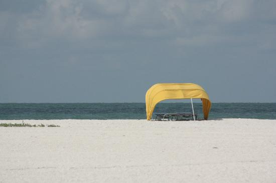 South Beach Condo/Hotel: View on Beach