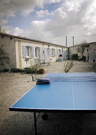 Tomlins Vegetarian Guest House: Gites in the background of a ping pong game