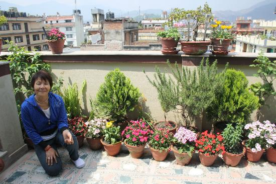 Asmita Bed & Breakfast: Asmita with the flowers on the fantastic terrace, good for relax...
