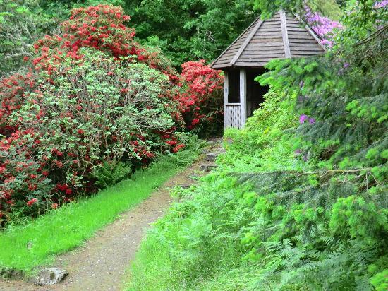 Cairndow, UK: The oak gazebo