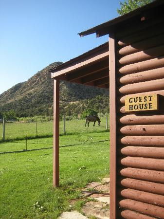 Pack Creek Ranch: View from side of cabin