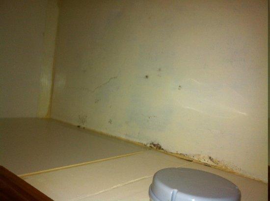 Water Damage Cracks In Bathroom Ceiling Plus Delightful
