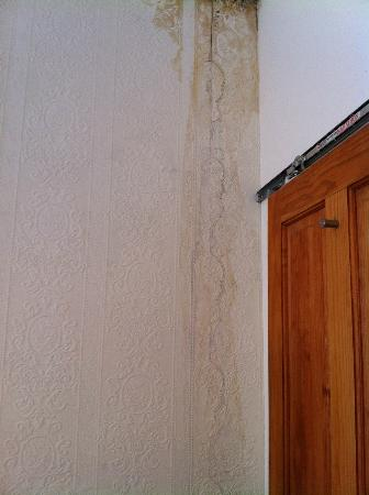 Savannah Guest House: More water damage, leaking & mould - and broken door frame.
