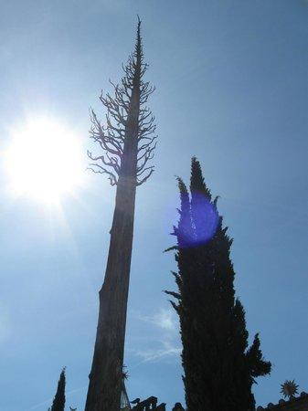 Montegabbione, Itália: Interno della Scarzuola