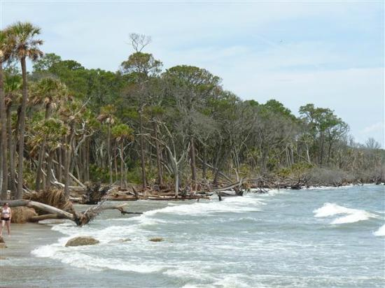 Hunting Island State Park: Gilligan's Island