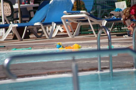Hotel Altamadores: bilde fra bassenget