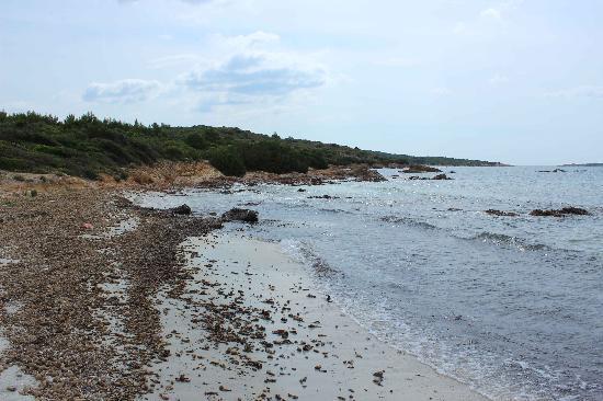 Cala Brandinchi: distesa di alghe