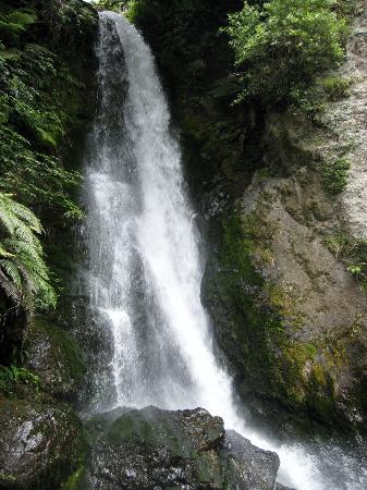 Grumpy's Transfers & Tours : Te Wairoa Falls