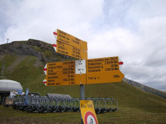 Grindelwald, سويسرا: First
