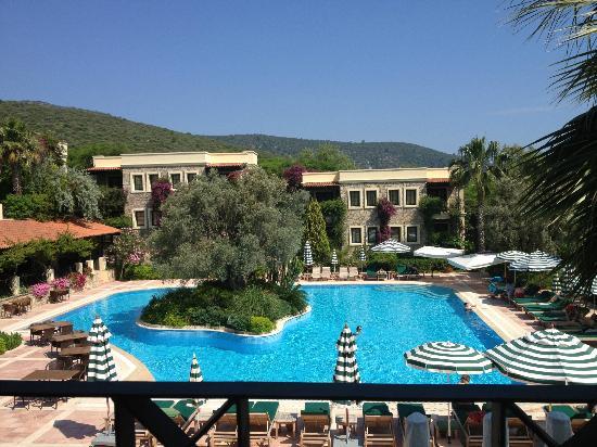 Hotel Zeytinada: garden
