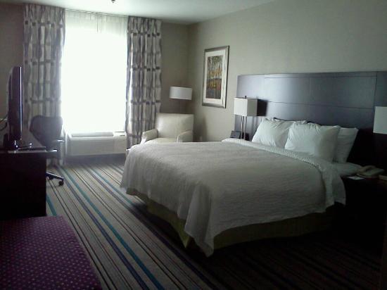 Fairfield Inn & Suites Amarillo Airport: Room