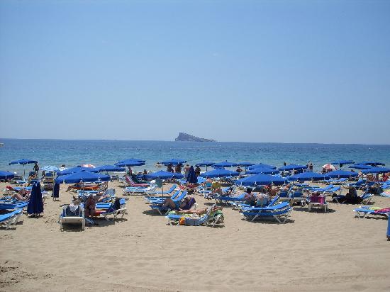 Port Fiesta Park : beach