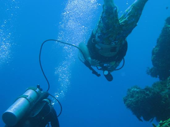 Blue XT Sea Diving: Son stealing off pedro's bottle - gave us all that much more