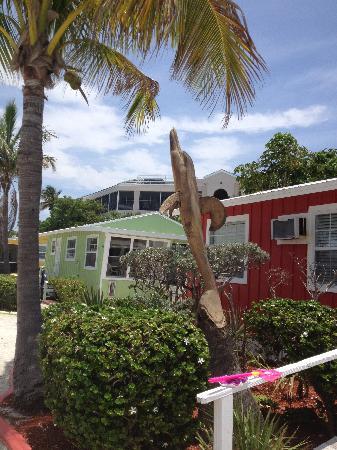 Beachview Cottages: cottage