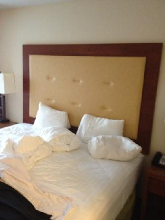 Holiday Inn Richmond Airport : king bed