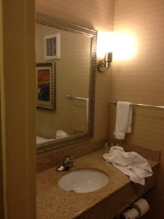 Holiday Inn Richmond Airport : bathroom