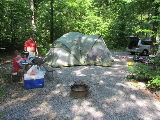Yogi Bear's Jellystone Park Camp-Resort  Hagerstown: Site 111, roomy, near others but with some privacy.