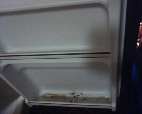 Comfort Suites Hotel - Lansing: Mini fridge side door