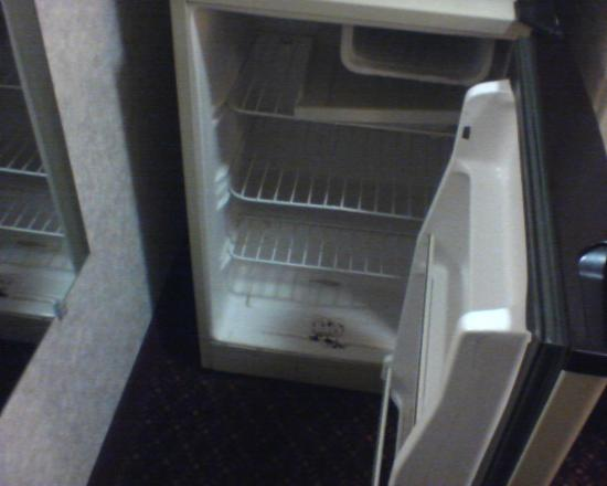 Comfort Suites Hotel - Lansing: Mini fridge bottom