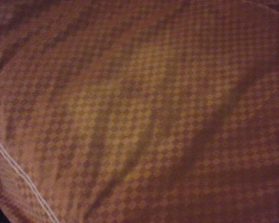 Comfort Suites Hotel - Lansing: Stain on bedding..looks like pee