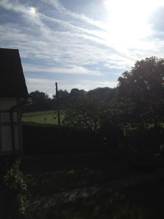 Leaveland, UK: Taken from the window in our room, where we were serenaded by a variety of birds!