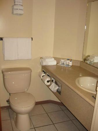 Howard Johnson Hotel - Nanaimo Harbourside: Bathroom