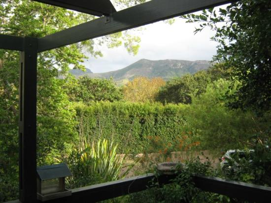 Constantia Stables: View from the private deck