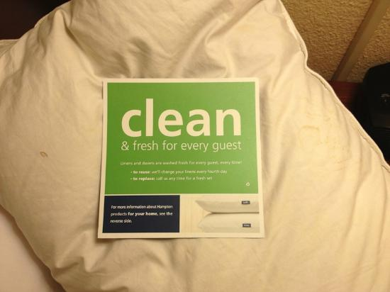 Hampton Inn & Suites Newport News (Oyster Point): Pillow
