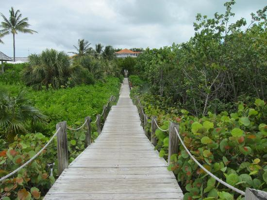COMO Parrot Cay, Turks and Caicos: Walk from beach to the main grounds