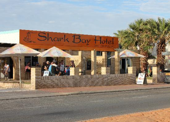 Shark bay hotel 2017 reviews photos denham tripadvisor for Sharks fish chicken birmingham al