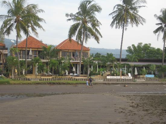 Dolphin Beach Bali: Dolphin Beach
