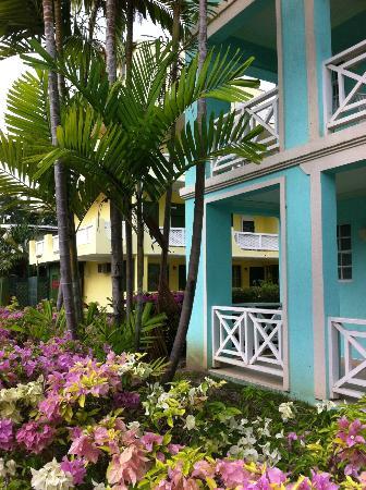 Dover Beach Hotel: hotel