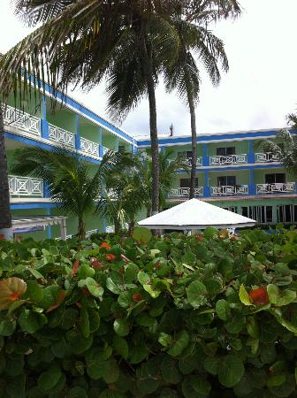 Dover Beach Hotel : view from the terrace/beach