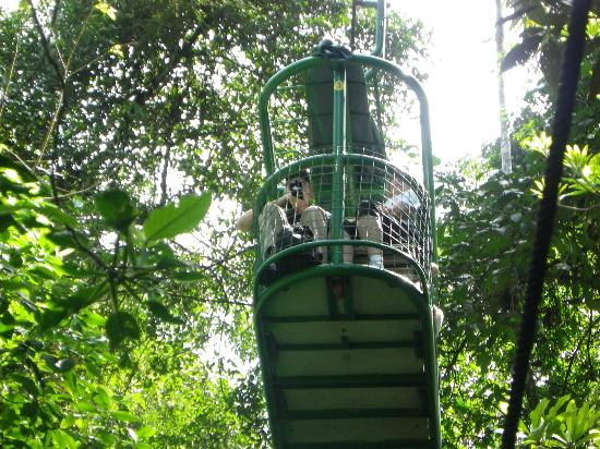 Rainforest Adventures : The aerial tram