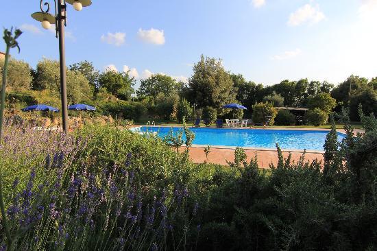 Il Casale Del Madonnino: La piscina al tramonto