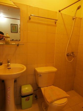 Apple Tree Suites Cebu: cclean bathroom
