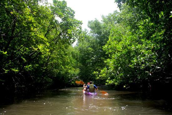 Krabi Kayak: Ao thalane kayaking