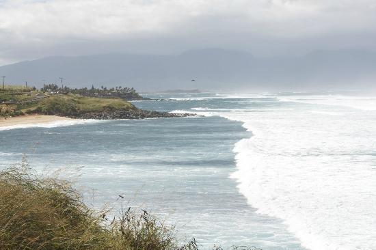 Paia, HI: Ho'okipa Beach area