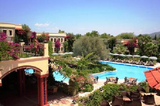 زيتيندا هوتيل: Hotel Zeytinada