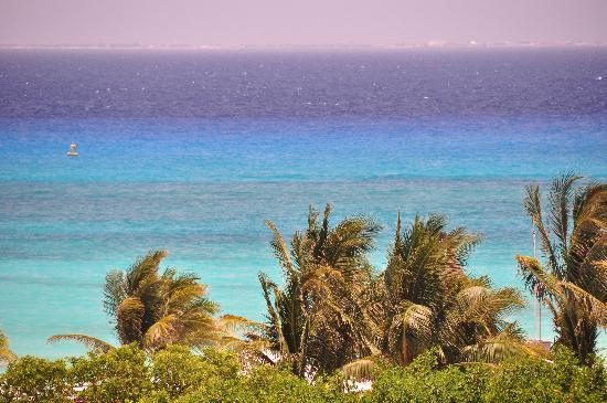 Riviera Maya Suites: view from the roof