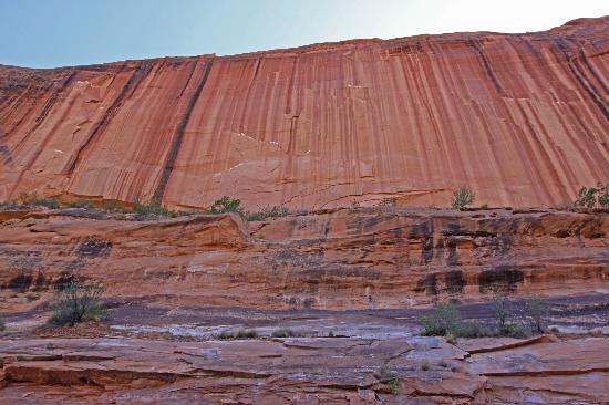 Colorado Riverway Recreation Area: looking up at the sandstone cliffs carved by the Colorado